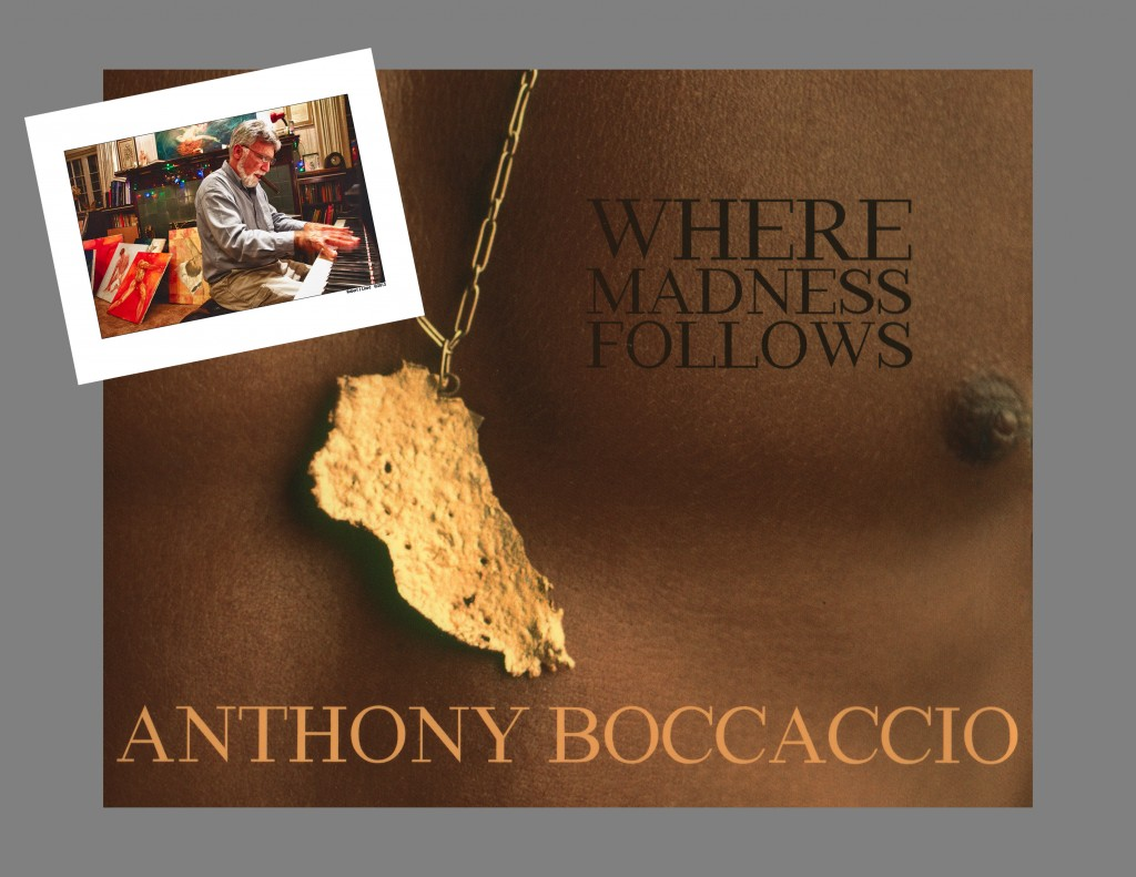 Photographer Painter Sculptor Pianist Storyteller Anthony Boccaccio;s new book.